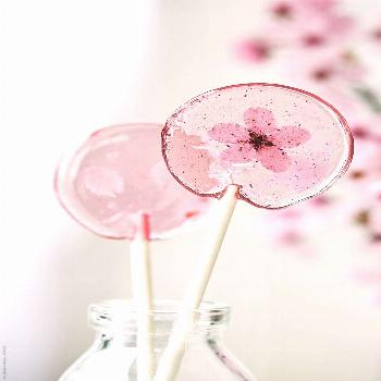 Homemade cherry blossom lollipops by Ruth Black for Stocksy United