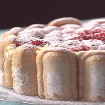 Raspberry Charlotte Express It takes a wall of ladyfinger cookies to hold in the sweet, creamy flav